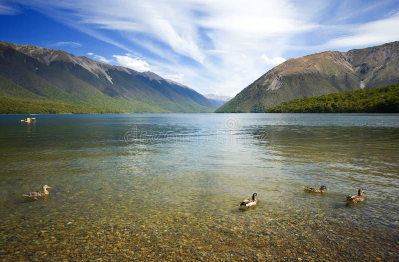 τοπίο Nelson λιμνών στοκ εικόνες