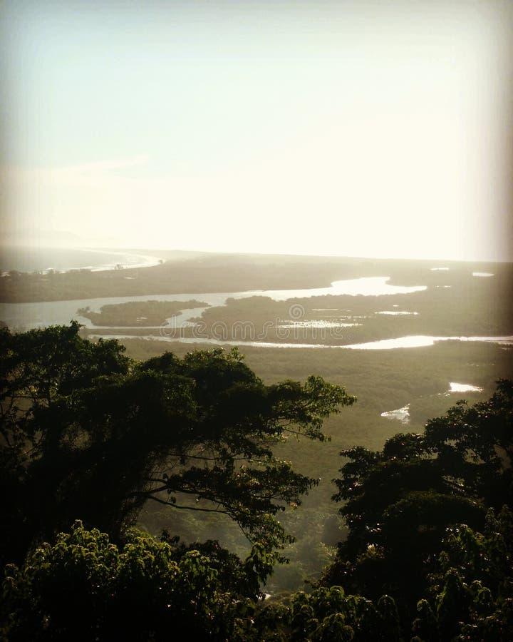 Τοπίο Restinga στοκ φωτογραφίες