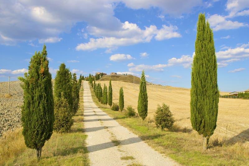 τοπίο tuscan λόφων χαρακτηριστ&iot στοκ φωτογραφία με δικαίωμα ελεύθερης χρήσης