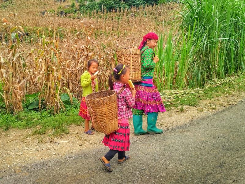 Τοπικά παιδιά στα παραδοσιακά ζωηρόχρωμα ενδύματα στα βουνά στοκ εικόνα