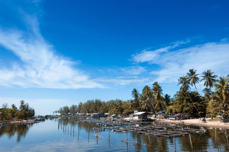 Τοπική αλιεία όχθεων ποταμού, τοπίο, seascape στοκ εικόνες με δικαίωμα ελεύθερης χρήσης