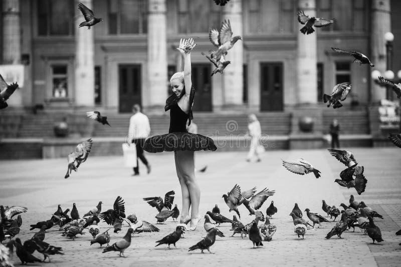 Τοποθέτηση Ballerina μεταξύ των πουλιών στοκ εικόνα