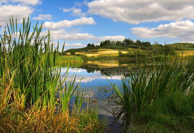 τοποθετήστε τις άγρια περιοχές στοκ εικόνα με δικαίωμα ελεύθερης χρήσης