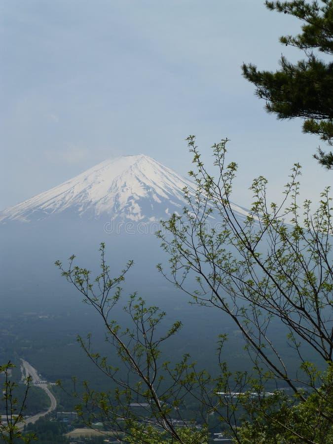 Τοποθετήστε το Φούτζι από το υποστήριγμα Tenjo, Hakone, Ιαπωνία στοκ φωτογραφία με δικαίωμα ελεύθερης χρήσης