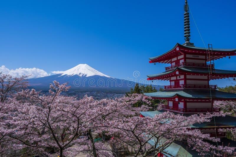 Τοποθετήστε το Φούτζι, μια παγόδα πέντε-πολυθρυλήτων και τα δέντρα κερασιών στοκ εικόνες με δικαίωμα ελεύθερης χρήσης