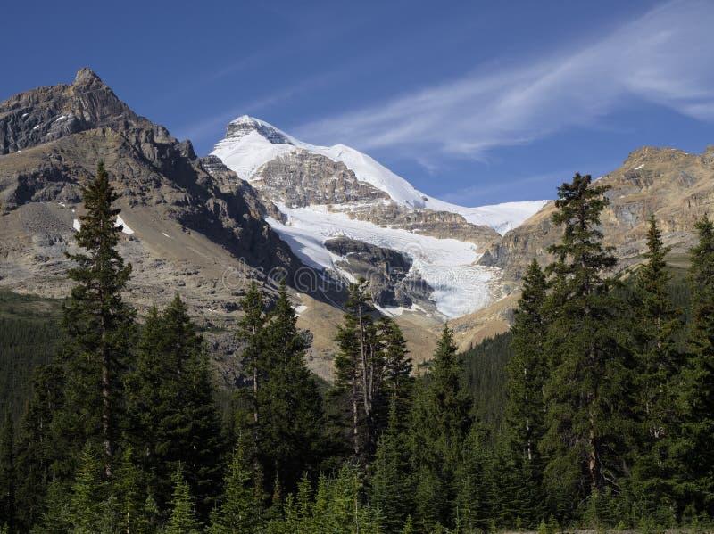 Τοποθετήστε Athabasca στοκ εικόνα με δικαίωμα ελεύθερης χρήσης