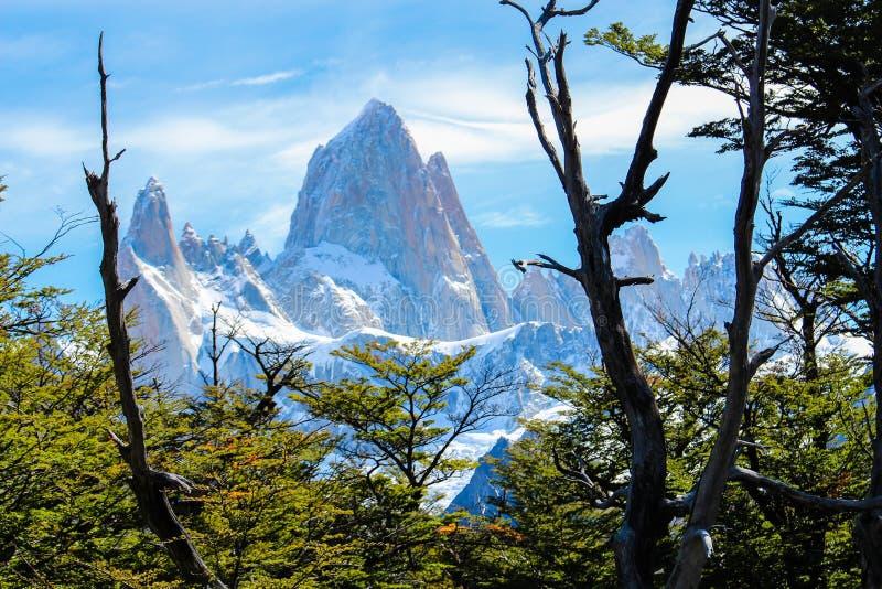 Τοποθετήστε fitz το Roy στη EL Chalten, εθνικό πάρκο Los Glaciares σε Arg στοκ εικόνα