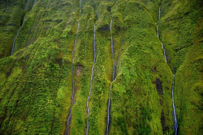 Τοποθετήστε Waialeale, Kauai, Χαβάη στοκ εικόνες