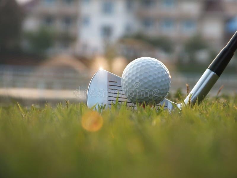 Τοποθετημένες αθλητές σφαίρες γκολφ κάτω στον τομέα στοκ φωτογραφίες