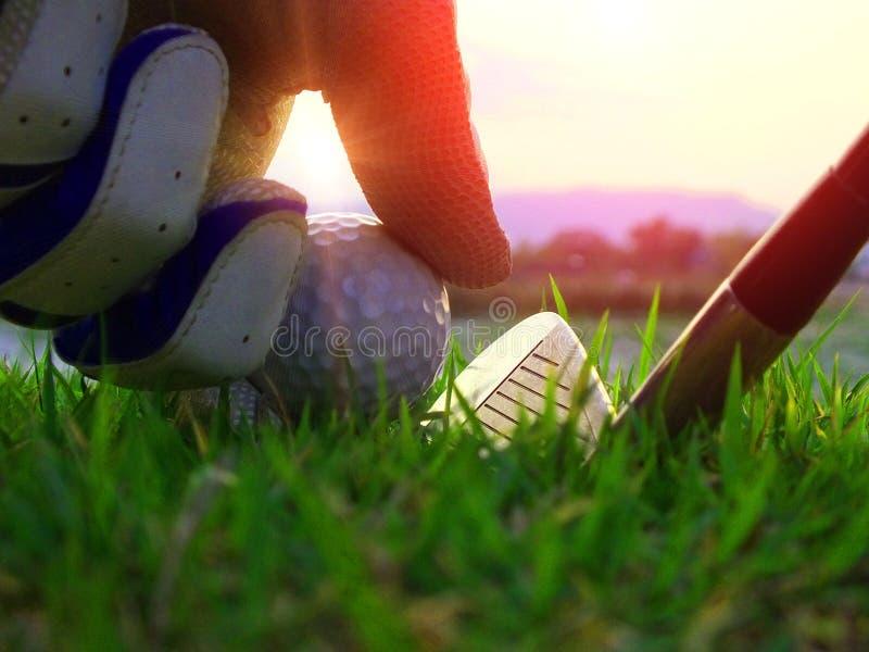 Τοποθετημένες αθλητές σφαίρες γκολφ κάτω στον τομέα στοκ εικόνες