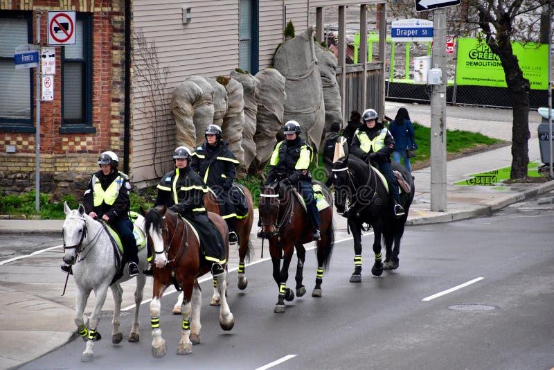 Τοποθετημένοι το Τορόντο αστυνομικοί στοκ εικόνες