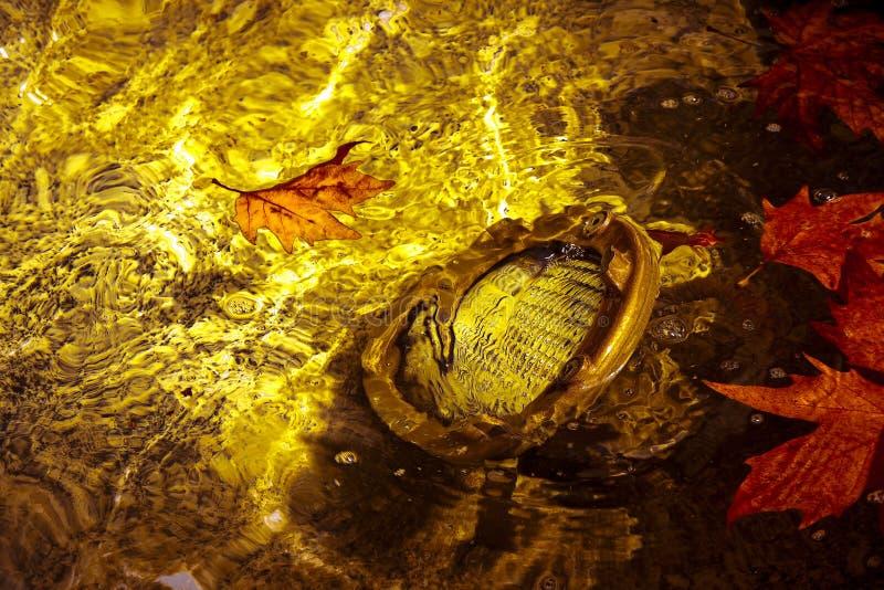 Τοποθετημένος λαμπτήρας πατωμάτων υποβρύχιος - εικόνα με το διάστημα αντιγράφων στοκ εικόνες