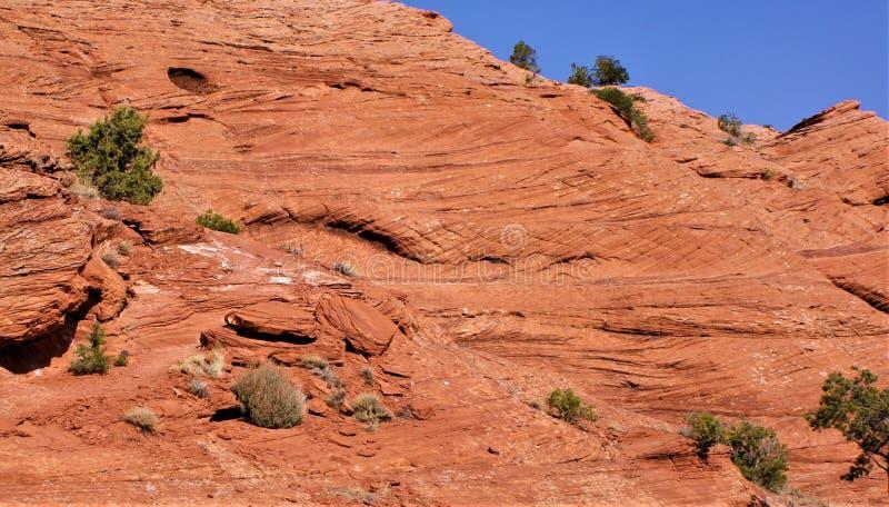 Τοποθετημένος στο κρεβάτι σταυρός ψαμμίτης οξειδίων σιδήρου Canyon de Chelly στοκ εικόνα με δικαίωμα ελεύθερης χρήσης