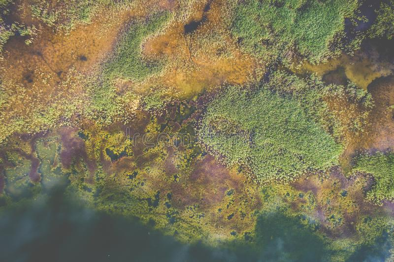 Τοπ άποψη της εναέριας λίμνης στοκ εικόνα με δικαίωμα ελεύθερης χρήσης