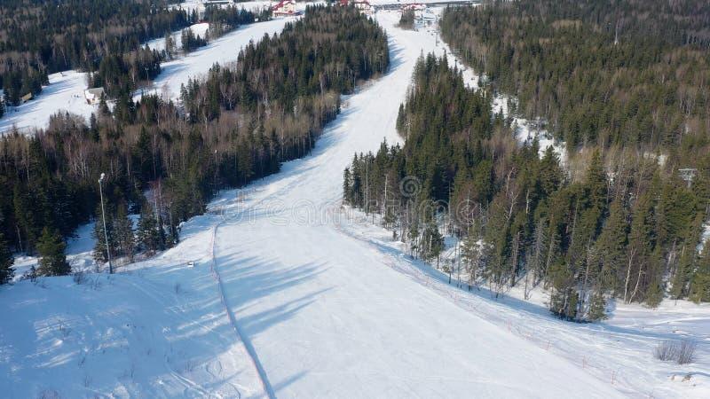 Τοπ άποψη της κλίσης σκι στο υπόβαθρο του χιονοδρομικού κέντρου footage Όμορφο τοπίο του χιονοδρομικού κέντρου με το παχύ κομψό δ στοκ εικόνες
