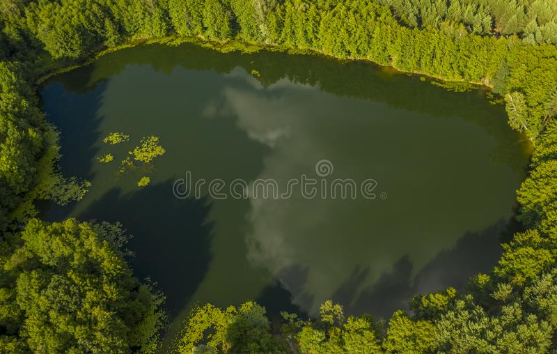 Τοπ άποψη της λίμνης που βρίσκεται στη μέση του δάσους στοκ φωτογραφίες με δικαίωμα ελεύθερης χρήσης