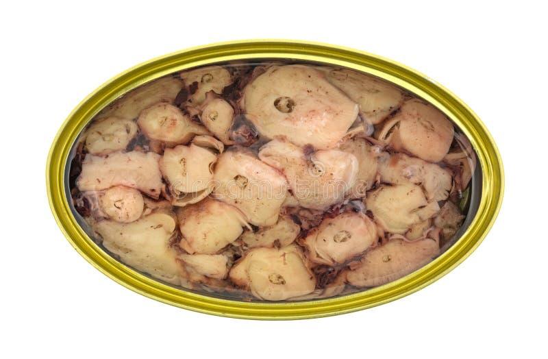 Τοπ άποψη του χταποδιού στη σάλτσα ελαίου και σκόρδου στοκ εικόνα