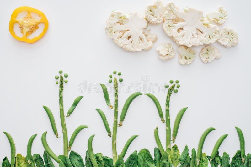 τοπ άποψη του όμορφου τοπίου φιαγμένη από πράσινα μπιζέλια, τεμαχισμένα πιπέρι και κουνουπίδι απεικόνιση αποθεμάτων