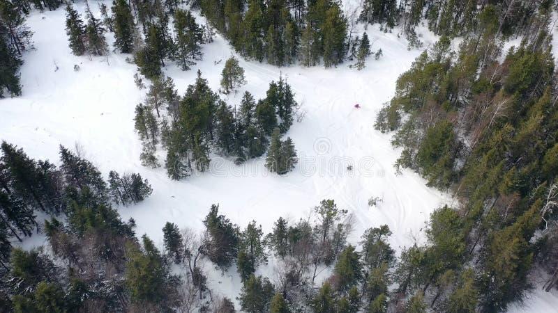 Τοπ άποψη των ανθρώπων που χάνεται στο δάσος το χειμώνα footage Η ομάδα ενεργών τουριστών χάθηκε στο πυκνό κωνοφόρο δάσος επάνω στοκ φωτογραφίες με δικαίωμα ελεύθερης χρήσης