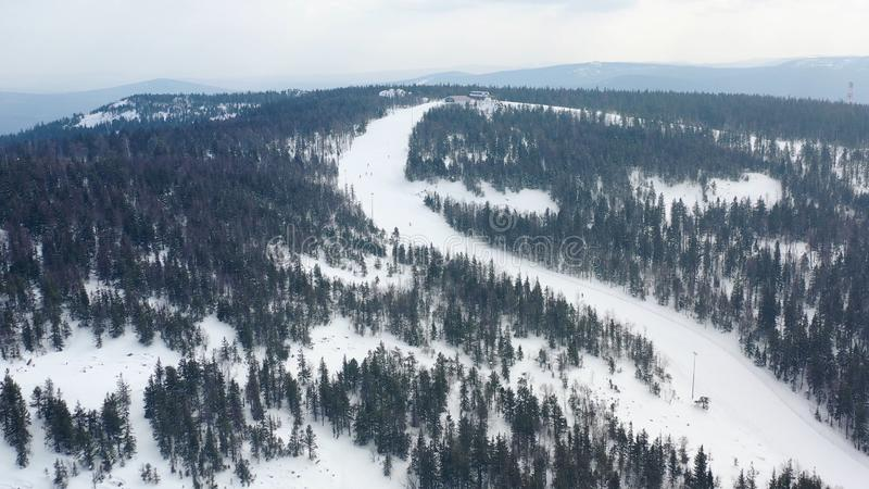 Τοπ άποψη των ανθρώπων που χάνεται στο δάσος το χειμώνα footage Η ομάδα ενεργών τουριστών χάθηκε στο πυκνό κωνοφόρο δάσος επάνω στοκ φωτογραφίες