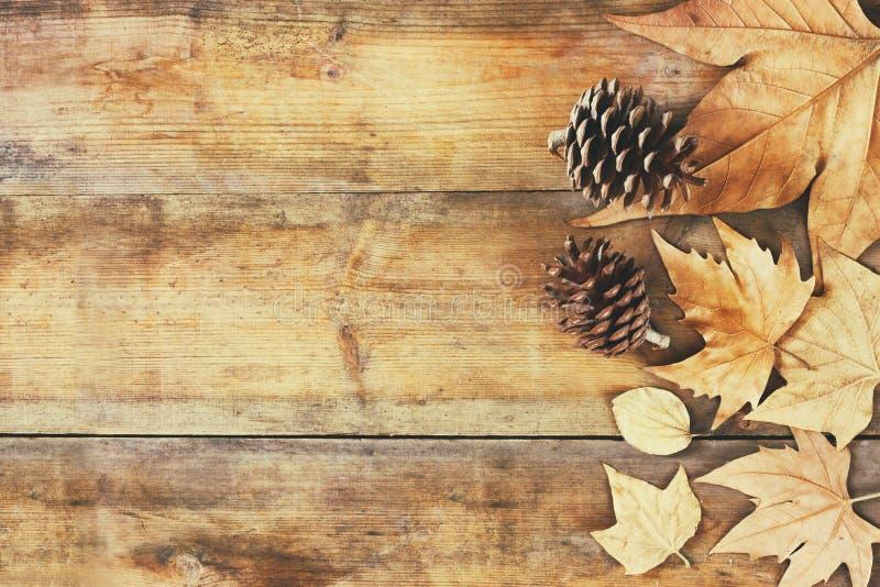 Τοπ εικόνα άποψης των φύλλων φθινοπώρου και των κώνων πεύκων πέρα από το ξύλινο κατασκευασμένο υπόβαθρο στοκ εικόνες με δικαίωμα ελεύθερης χρήσης