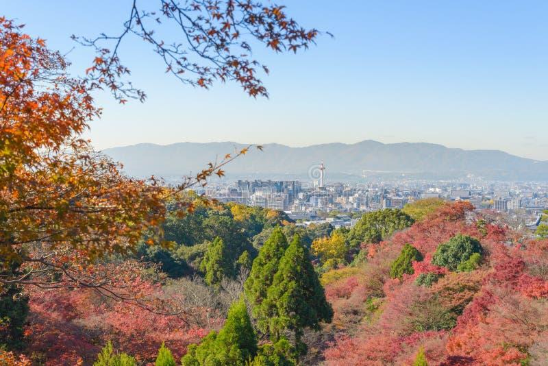 Τοπ Viwe της πόλης του Κιότο από το kiyomizu-Dera στην εποχή Κιότο φθινοπώρου στοκ εικόνες με δικαίωμα ελεύθερης χρήσης