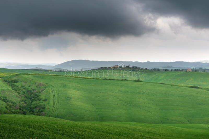 Τοσκάνη, αγροτικό τοπίο Αγρόκτημα επαρχίας, δέντρα κυπαρισσιών, πράσινος τομέας, νεφελώδης ημέρα στοκ φωτογραφία με δικαίωμα ελεύθερης χρήσης