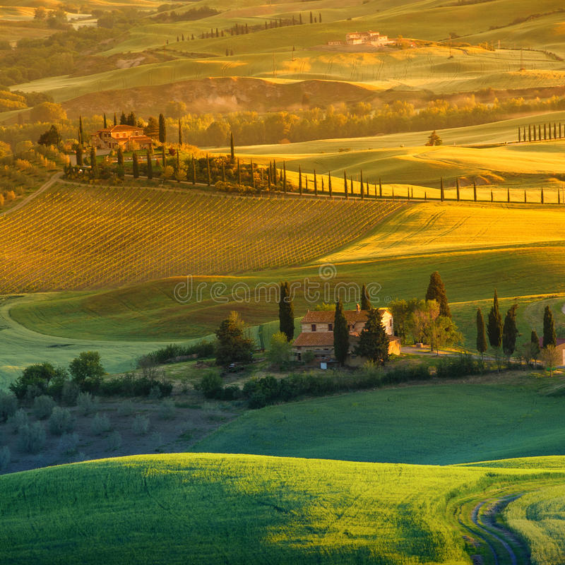 Τοσκάνη - Ιταλία στοκ φωτογραφίες με δικαίωμα ελεύθερης χρήσης