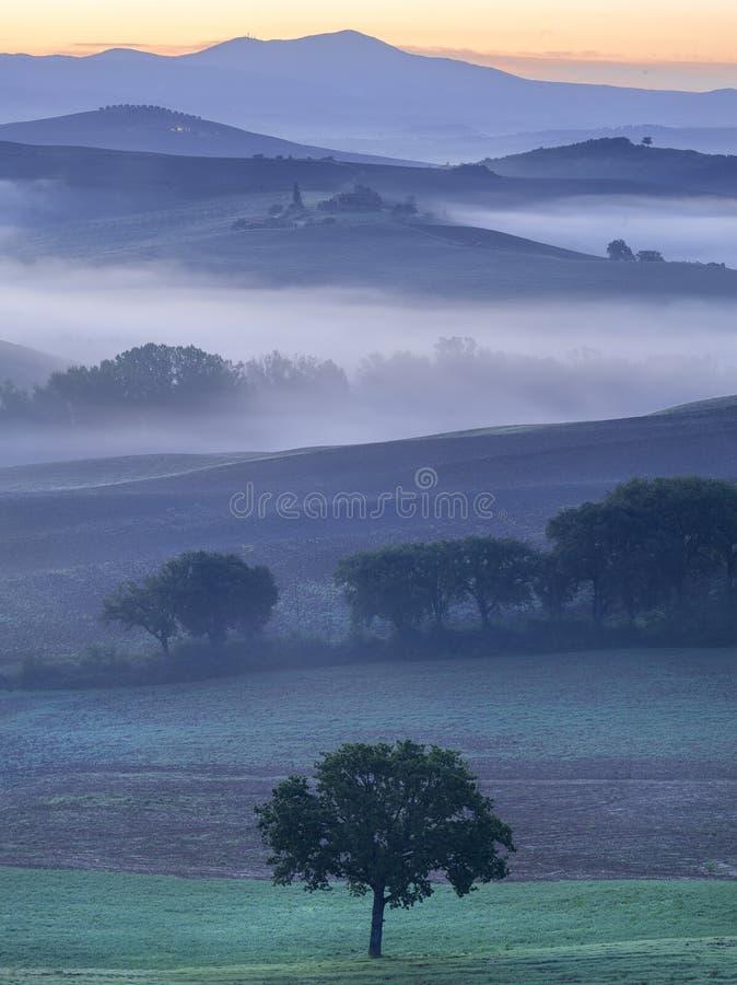 Τοσκάνη, Ιταλία, πρωί, ομίχλη, ηλιοβασίλεμα, relaxe, φύση, οικολογία, ταξίδι στοκ εικόνες με δικαίωμα ελεύθερης χρήσης
