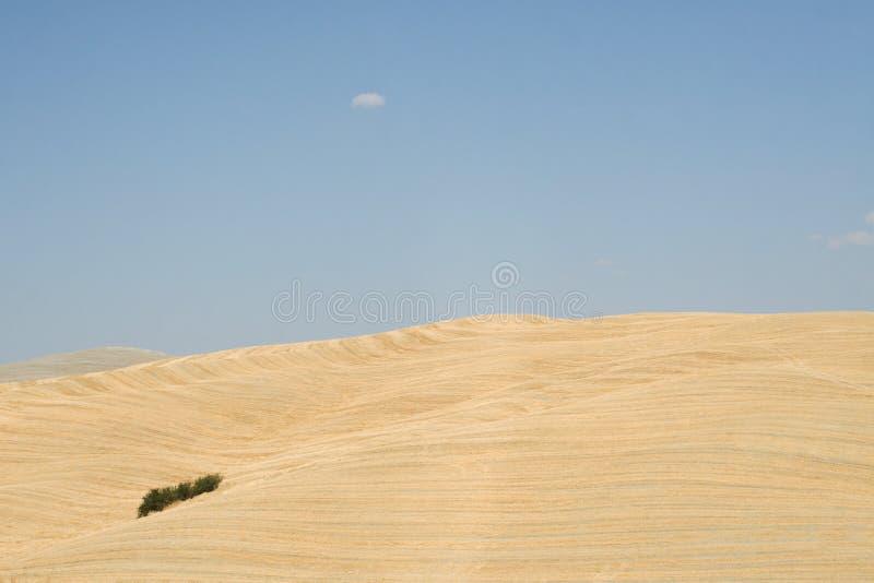 Τοσκάνη Κοιλάδα δ ` Orcia Val στοκ φωτογραφίες