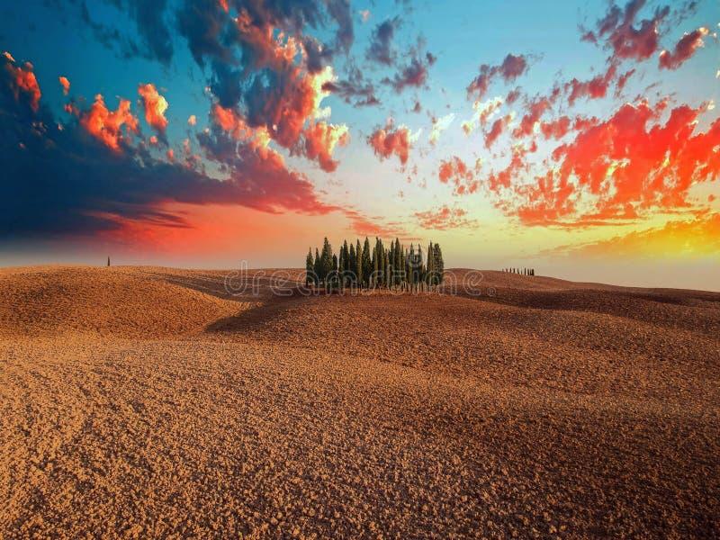 Τοσκάνη στο καλύτερό του, ηλιοβασίλεμα με τα κυπαρίσσια στοκ εικόνες με δικαίωμα ελεύθερης χρήσης