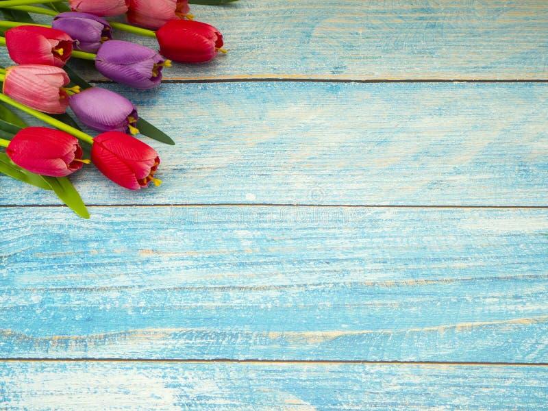 Τουλίπες στο μπλε ξύλινο υπόβαθρο στοκ φωτογραφίες