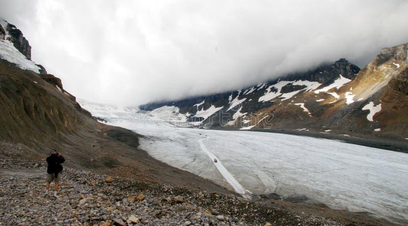 τουρίστας παγετώνων athabasca στοκ εικόνα