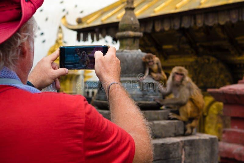 Τουρίστας που παίρνει τις φωτογραφίες με το κινητό τηλέφωνο στο ναό Swayambhunath Stupa πιθήκων σύνθετο, Κατμαντού, Νεπάλ στοκ φωτογραφία