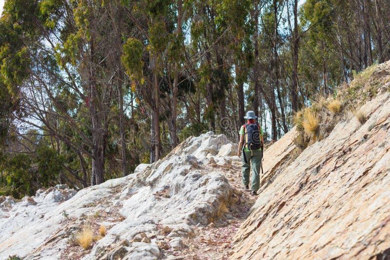 Τουρίστας που περπατά στο ίχνος Inca στο νησί του ήλιου, λίμνη Titicaca, Βολιβία Έννοιες του wanderlust και των ανθρώπων που ταξι στοκ φωτογραφίες με δικαίωμα ελεύθερης χρήσης