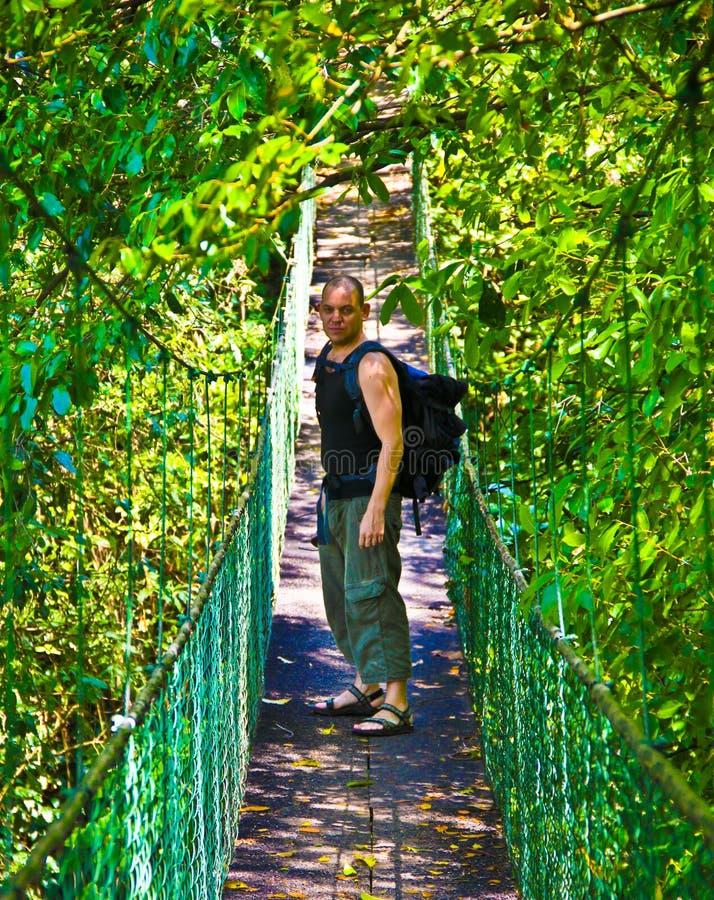 Τουρίστας σε μια γέφυρα ζουγκλών στοκ φωτογραφίες