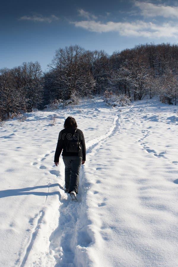 τουρίστας χιονιού στοκ εικόνες