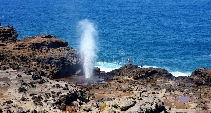 Τουρίστες που θαυμάζουν blowhole Nakalele στην ακτή Maui Ένα αεριωθούμενο αεροπλάνο του νερού και του αέρα αναγκάζεται βίαια έξω  στοκ φωτογραφία με δικαίωμα ελεύθερης χρήσης