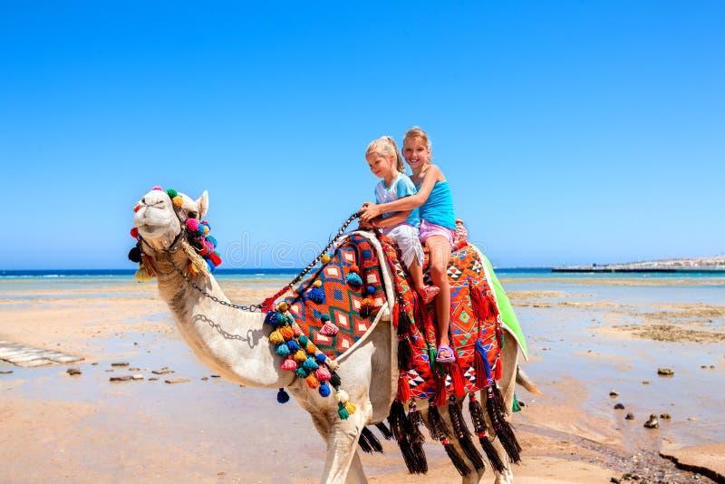 Τουρίστες που οδηγούν την καμήλα στην παραλία της Αιγύπτου στοκ φωτογραφίες