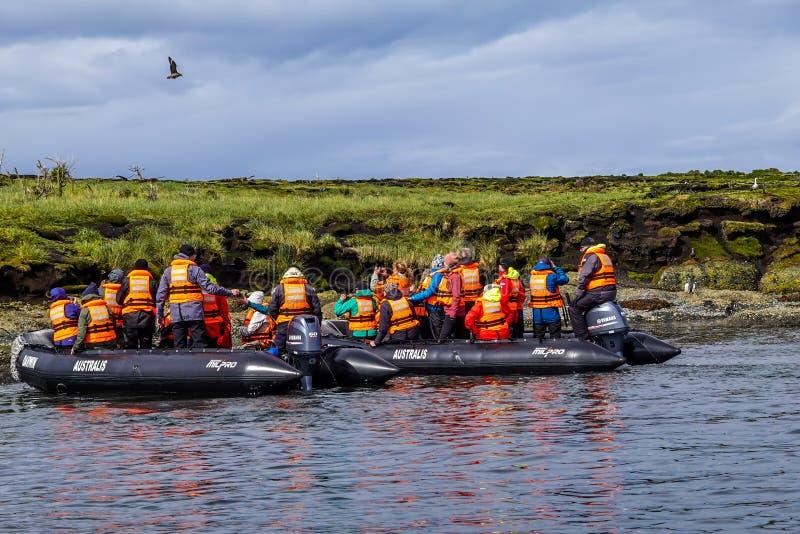 Τουρίστες που παρακολουθούν τους μαγγελανούς πιγκουίνους στο Tuckers Islets κατά τη διάρκεια της αποστολής Tierra del Fuego: Vent στοκ εικόνες