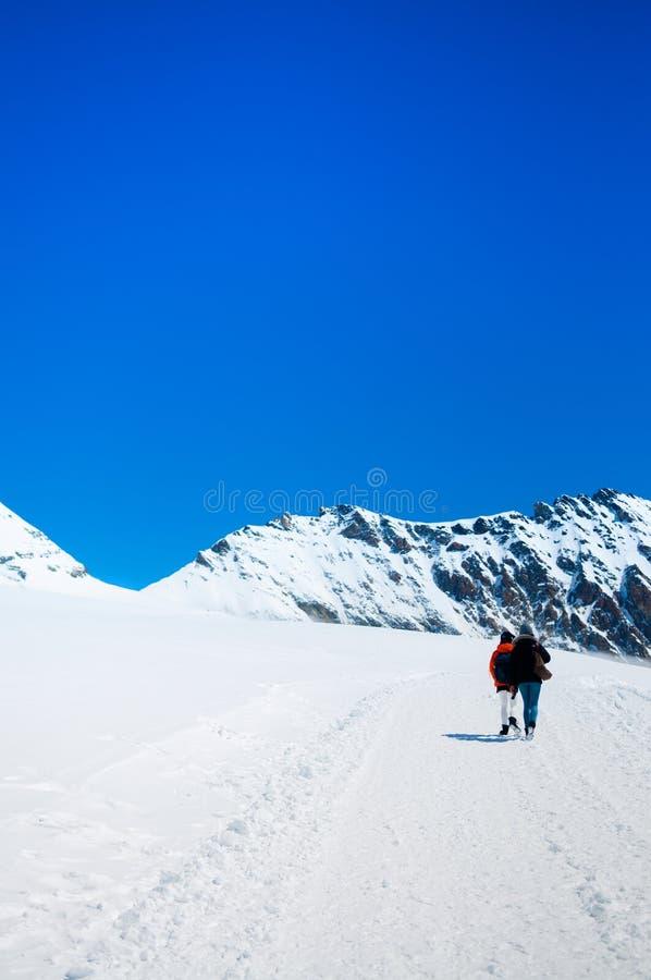 Τουρίστες που πραγματοποιούν οδοιπορικό σε Jungfrau, ελβετικές Άλπεις της Ελβετίας στοκ φωτογραφίες με δικαίωμα ελεύθερης χρήσης
