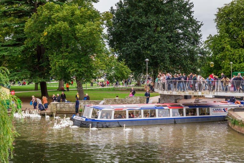 Τουρίστες στη βάρκα που περιβάλλεται από τους κύκνους, Stratford επάνω σε Avon, πόλη του William Shakespeare ` s, Δυτικές Μεσαγγλ στοκ φωτογραφία