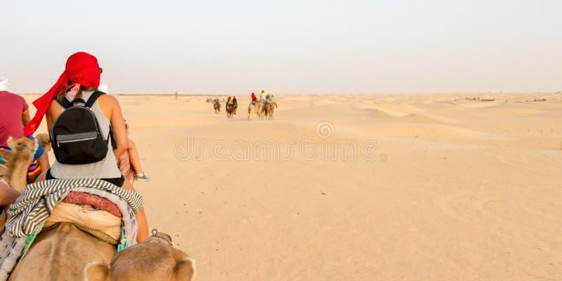 Τουρίστες στις καμήλες που περνούν από τους αμμόλοφους άμμου στην έρημο Σαχάρας, Τυνησία, Αφρική στοκ φωτογραφία με δικαίωμα ελεύθερης χρήσης