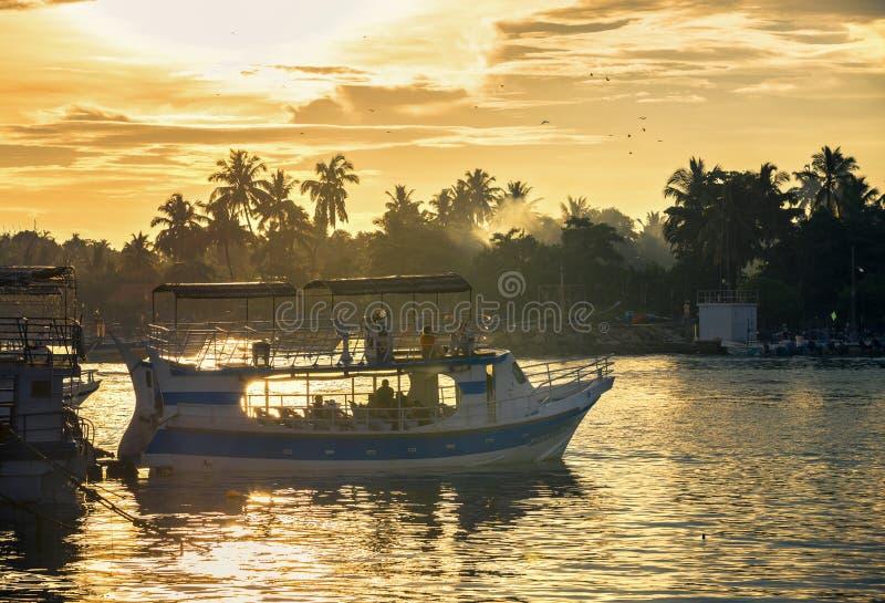 Τουριστικές βάρκες κοντά στον κόλπο Mirissa στο ηλιοβασίλεμα στοκ φωτογραφία με δικαίωμα ελεύθερης χρήσης