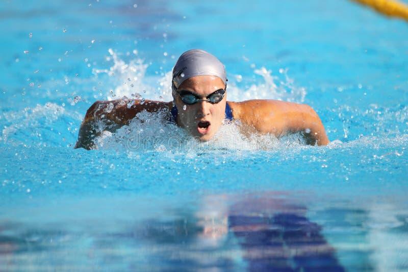 Τουρκικό πρωτάθλημα κολύμβησης στοκ εικόνα