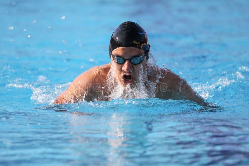 Τουρκικό πρωτάθλημα κολύμβησης στοκ φωτογραφία