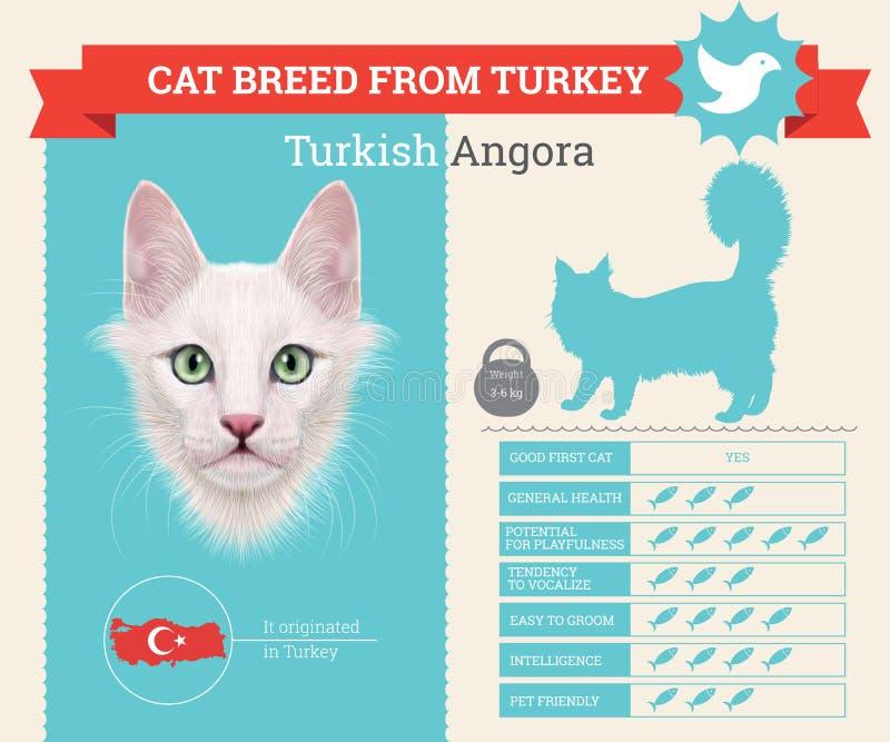 Τουρκικό infographics φυλής γατών ανκορά διανυσματική απεικόνιση