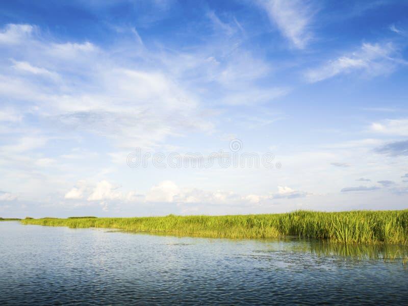 Του δέλτα λιμνοθάλασσα Δούναβη στοκ φωτογραφία