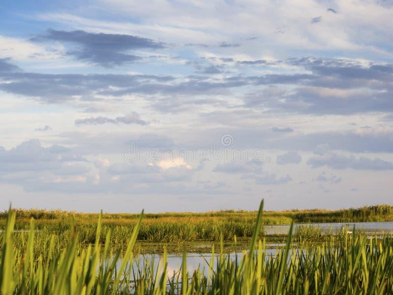 Του δέλτα λιμνοθάλασσα Δούναβη στοκ εικόνες