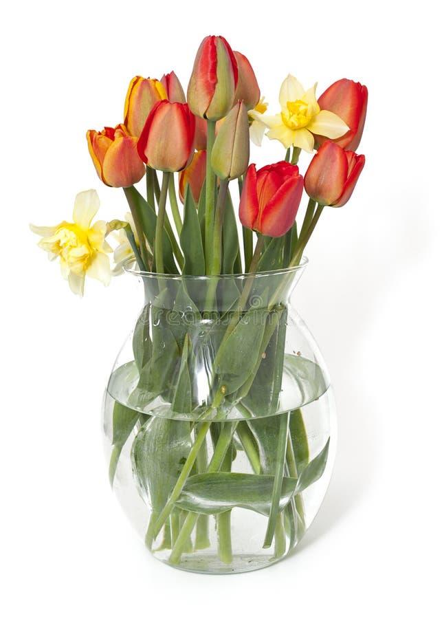 Τουλίπες και λουλούδια ναρκίσσων σε ένα βάζο γυαλιού στοκ φωτογραφία με δικαίωμα ελεύθερης χρήσης